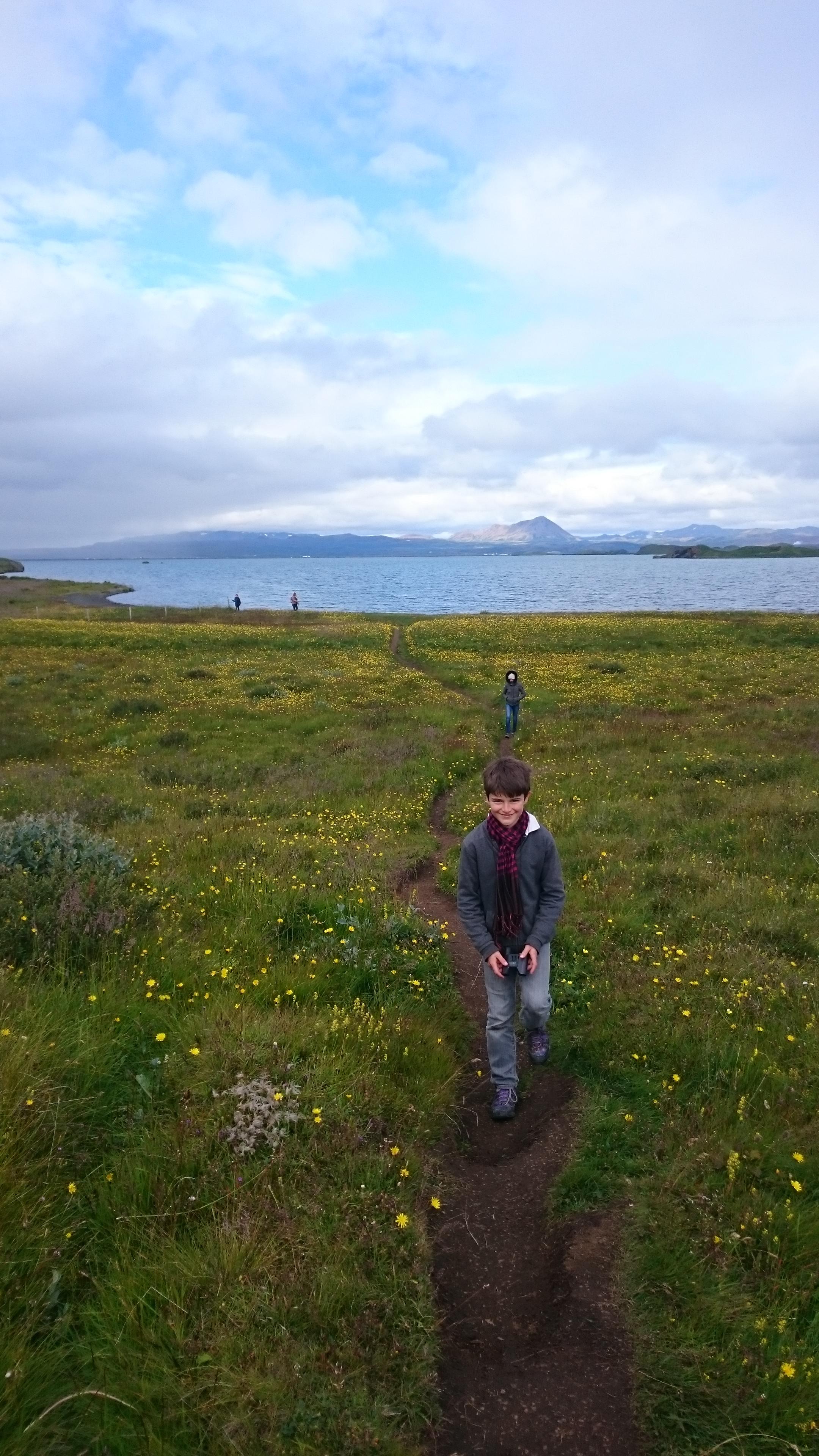 Promenade all green Islande