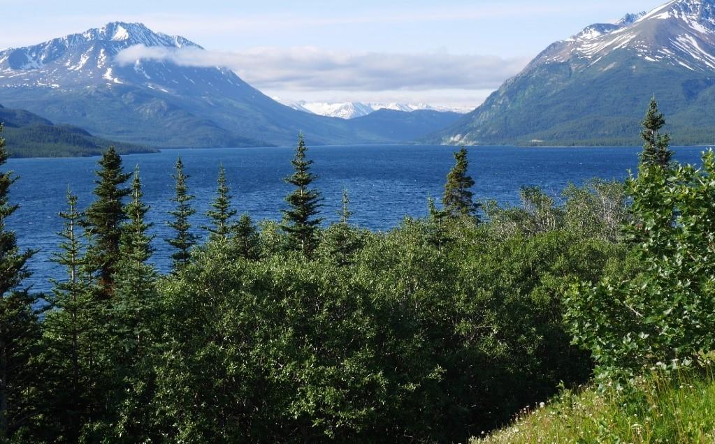 Point de vue, lac, paysages