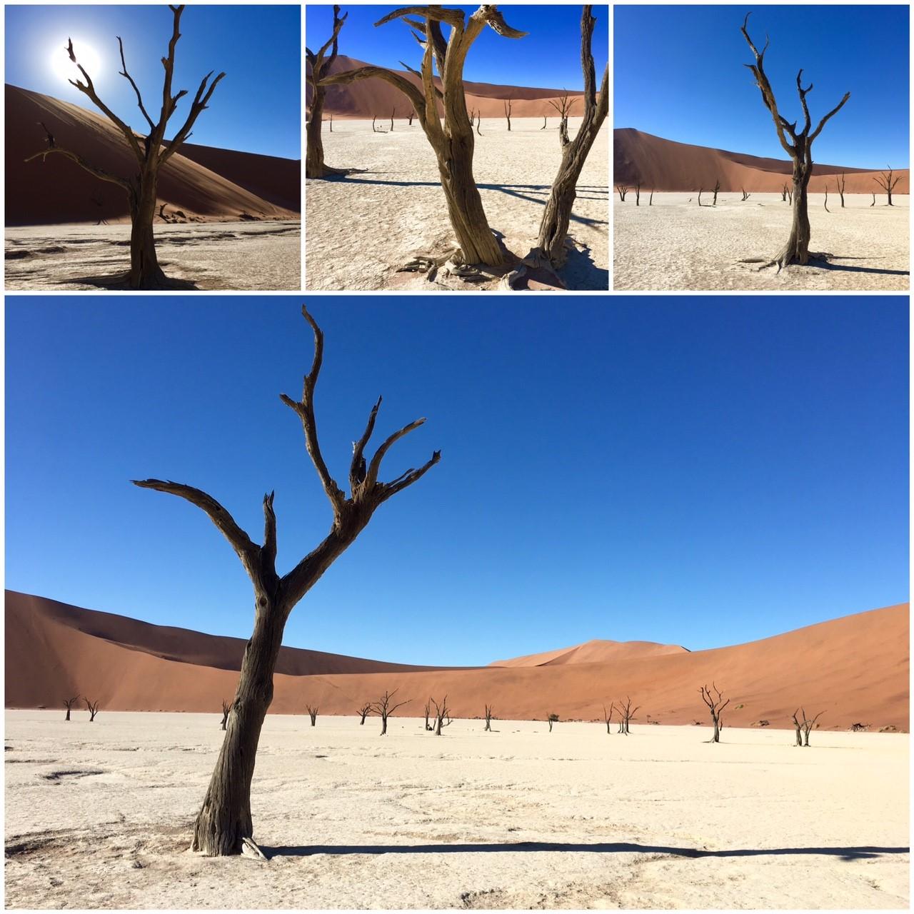 désert Namibie roadtrip