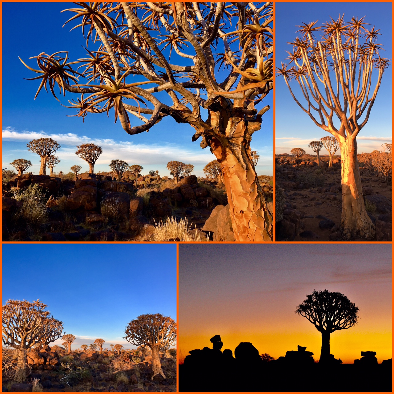 Road trip 4x4 Namibie