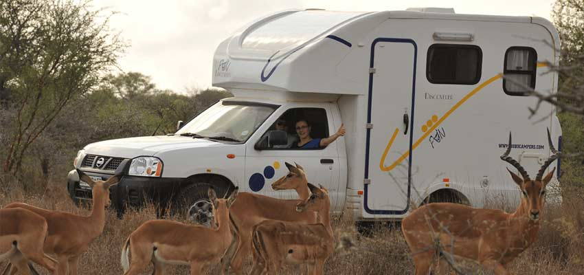 Truck_Antelope-Fun-05.jpg